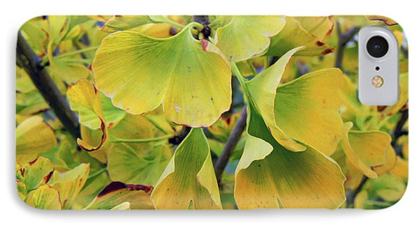 Ginkgo Gold IPhone Case