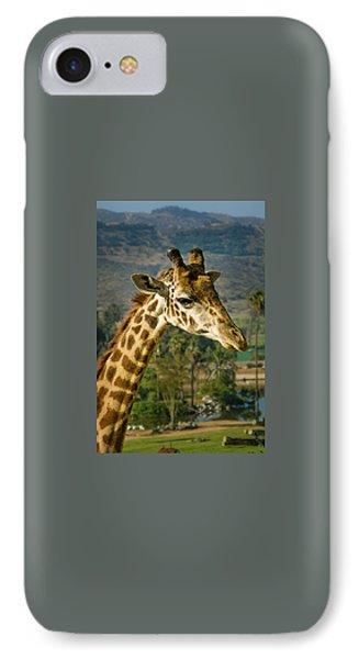 Giraffe IPhone Case by April Reppucci