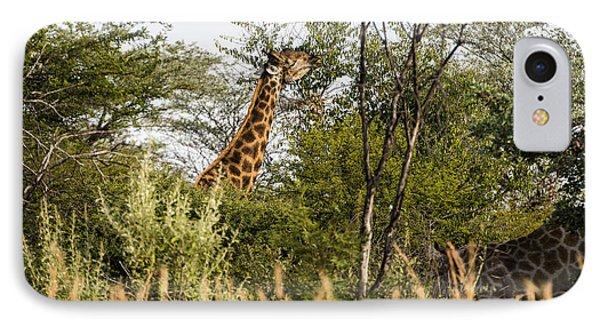 Giraffe Browsing IPhone Case