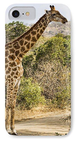 Giraffe Grazing IPhone Case