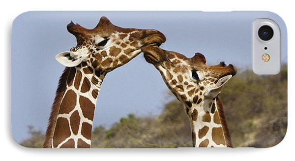 Giraffe Kisses IPhone 7 Case by Michele Burgess