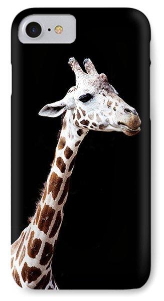 Giraffe IPhone Case by Lauren Mancke