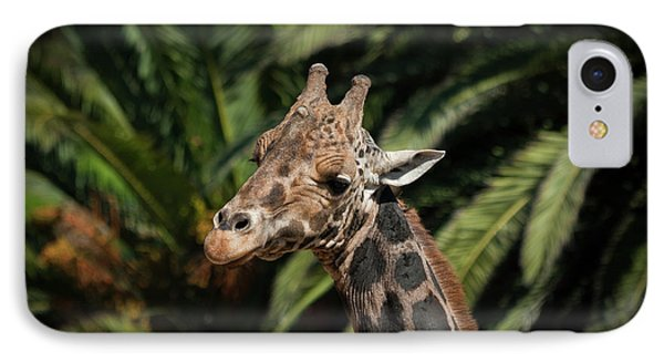 IPhone Case featuring the photograph Giraffe  by Roger Mullenhour