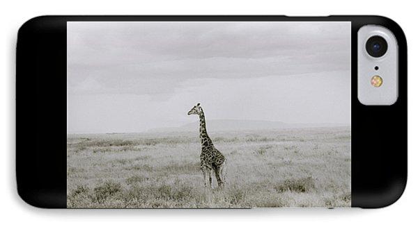 Giraffe IPhone Case by Shaun Higson