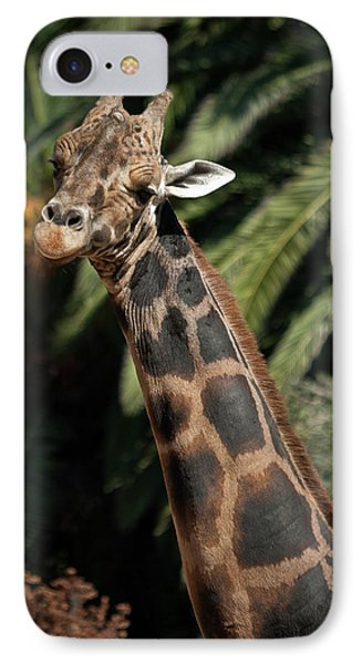IPhone Case featuring the photograph Giraffe Study 2 by Roger Mullenhour