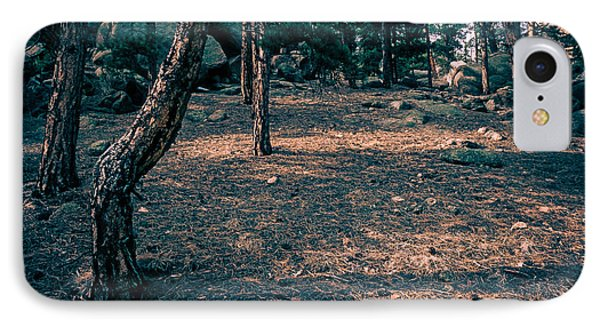Glade In The Forest Of Colorado IPhone Case by John Brink