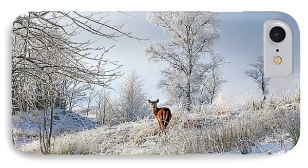 IPhone Case featuring the photograph Glen Shiel Misty Winter Deer by Grant Glendinning