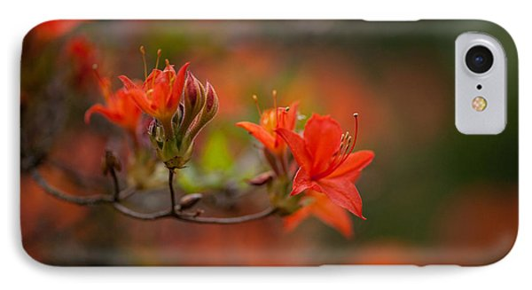 Glorious Blooms IPhone Case by Mike Reid