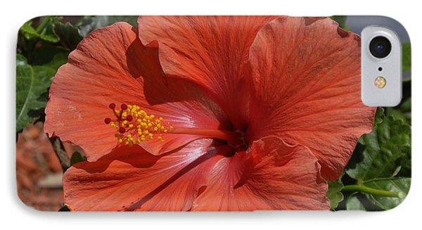 Glorious Hibiscus IPhone Case