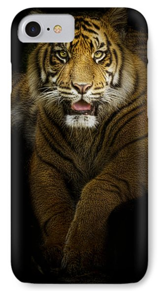 Glory IPhone Case by Cheri McEachin