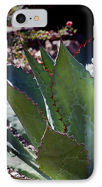 IPhone Case featuring the photograph Glowing Agave by Phyllis Denton