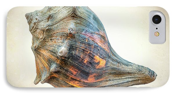 IPhone Case featuring the photograph Glowing Conch Shell by Gary Slawsky
