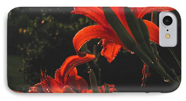 IPhone Case featuring the photograph Glowing Day Lilies by Donna Brown