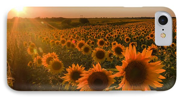 Glowing Sunflowers IPhone Case by Scott Bean
