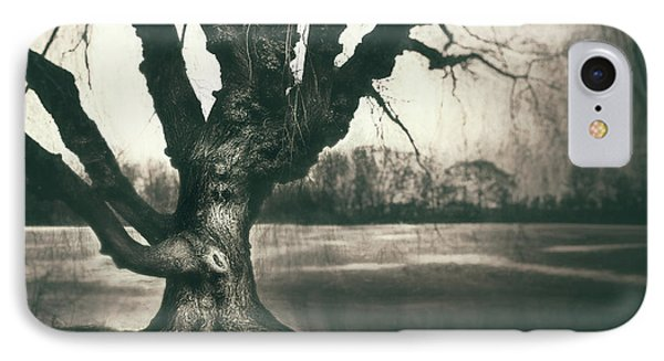 Gnarled Old Tree IPhone Case by Scott Norris