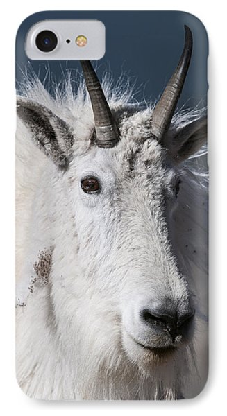Goat Portrait IPhone 7 Case