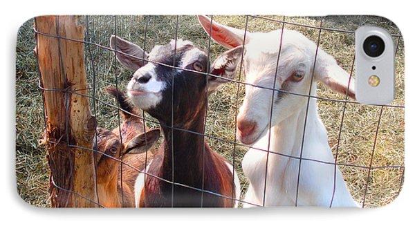 Goats IPhone Case by Felipe Adan Lerma