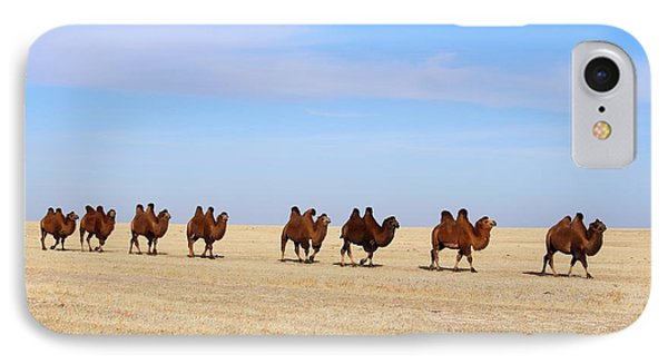 Gobi Camels IPhone Case by Diane Height