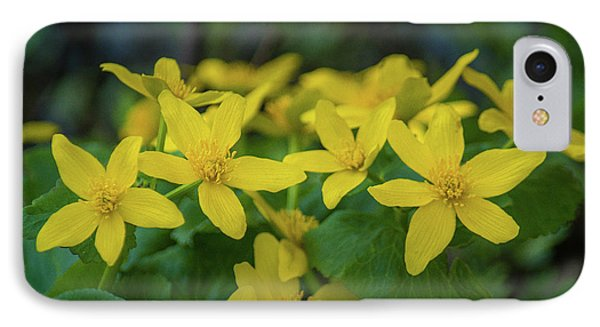 IPhone 7 Case featuring the photograph Gold In The Marsh by Bill Pevlor