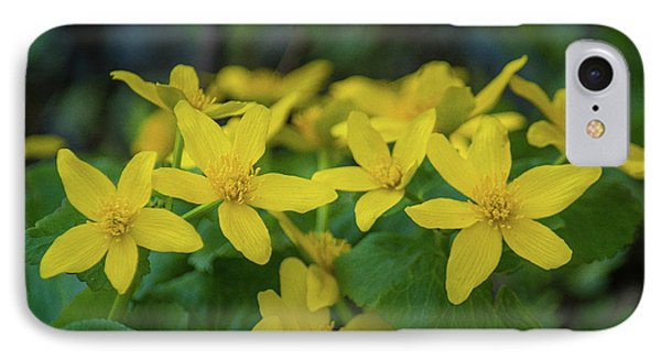 IPhone Case featuring the photograph Gold In The Marsh by Bill Pevlor