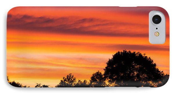Gold In The Sky IPhone Case by Shelby  Young