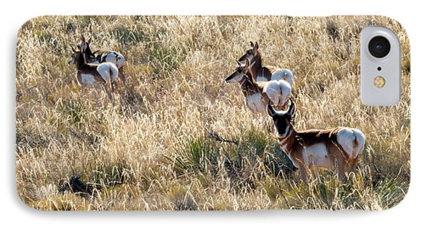 Golden Antelope Herd IPhone Case by Mike Dawson
