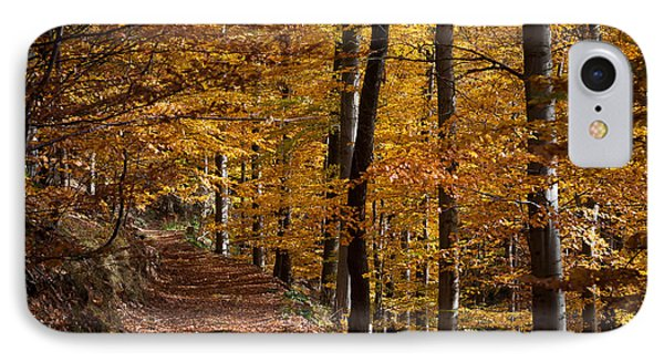 Golden Autumn IPhone Case by Andreas Levi