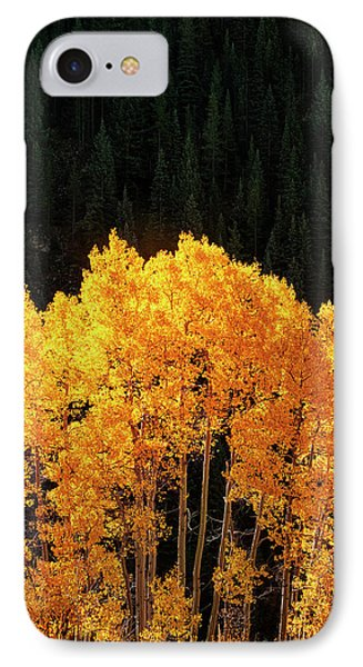 IPhone Case featuring the photograph Golden Autumn by Andrew Soundarajan
