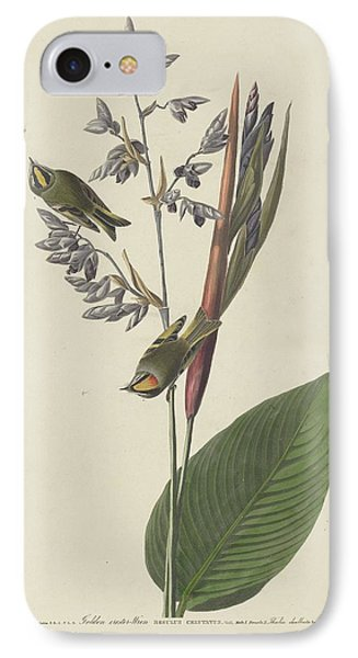 Golden-crested Wren IPhone 7 Case by Rob Dreyer