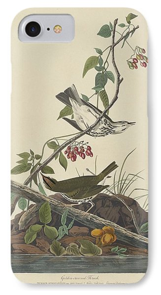 Golden-crowned Thrush IPhone 7 Case by Rob Dreyer