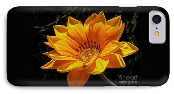 Golden Daisy IPhone Case by Kaye Menner