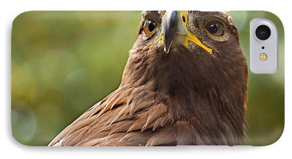 Golden Eagle Portrait Phone Case by Peter J Sucy