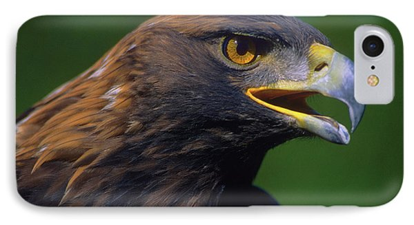 Golden Eagle Phone Case by Tony Beck