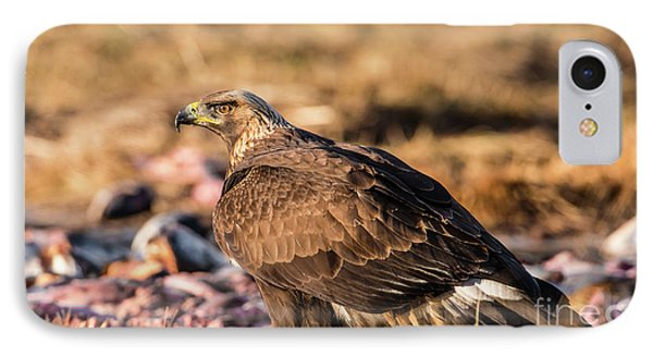 IPhone Case featuring the photograph Golden Eagle's Back by Torbjorn Swenelius