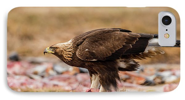 IPhone Case featuring the photograph Golden Eagle's Profile by Torbjorn Swenelius