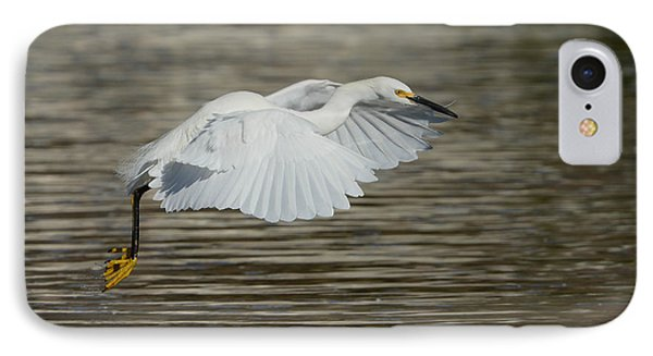 IPhone Case featuring the photograph Golden Flight by Fraida Gutovich