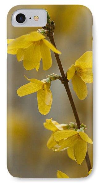 Golden Forsythia IPhone Case by Kathy Clark