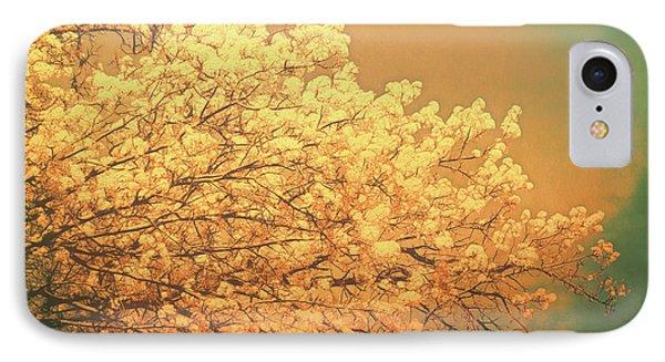 Golden Glow IPhone Case by Ann Powell