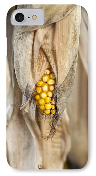 Golden Harvest IPhone Case