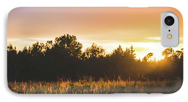 Golden Hues At Sunset IPhone Case by Shelby Young