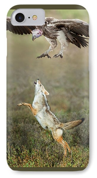 Golden Jackal, Canis Aureus, Leaping At Vulture IPhone 7 Case