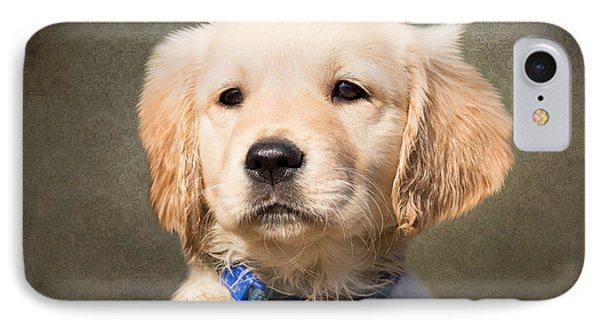 Golden Labrador Puppy IPhone Case by Nichola Denny