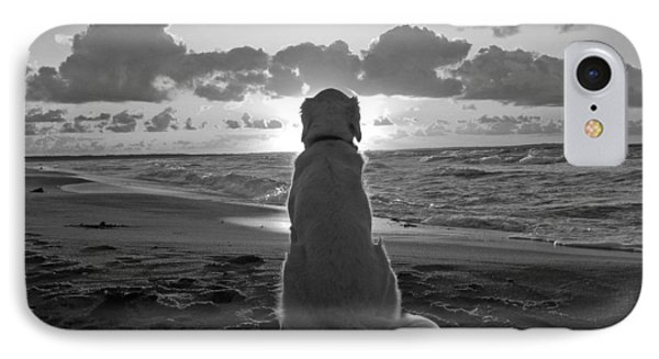 Golden Labrador Watching Sunset IPhone Case by Sumit Mehndiratta