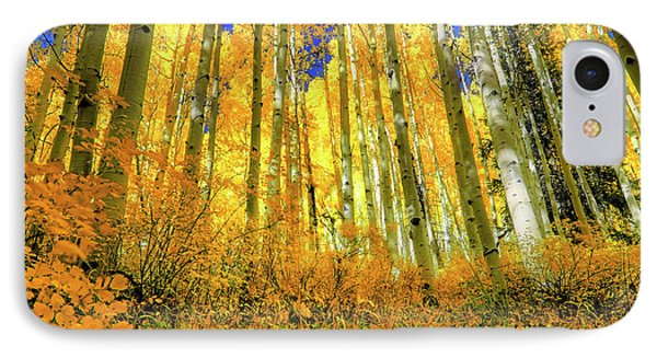 IPhone Case featuring the photograph Golden Light Of The Aspens - Colorful Colorado - Aspen Trees by Jason Politte