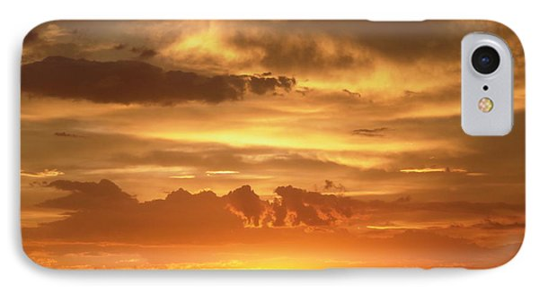 Golden Light IPhone Case by Stephanie Moore