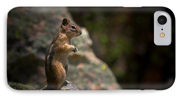 Golden Mantled Ground Squirrel Rocky Mountains Colorado Phone Case by Christine Till