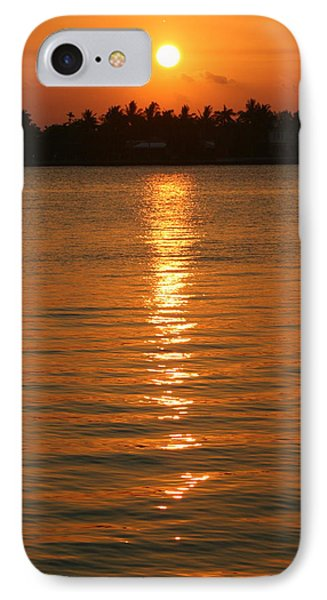IPhone Case featuring the photograph Golden Moment by Diane Merkle