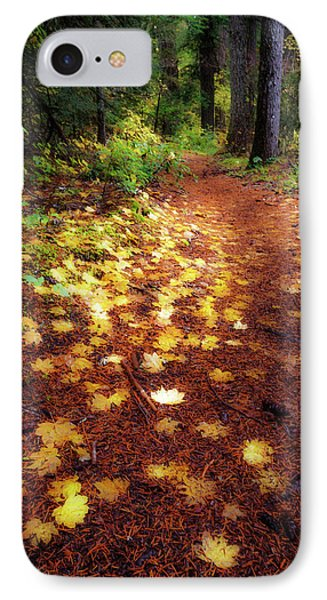 IPhone Case featuring the photograph Golden Path by Cat Connor