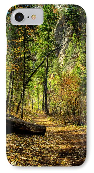 Golden Path Of Shadows IPhone Case