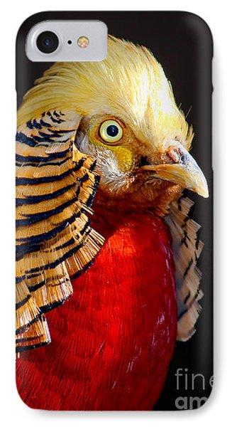 Golden Pheasant IPhone Case by Martin Konopacki